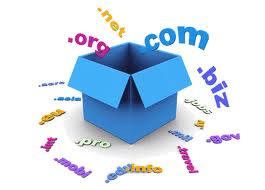 Domain Registration...